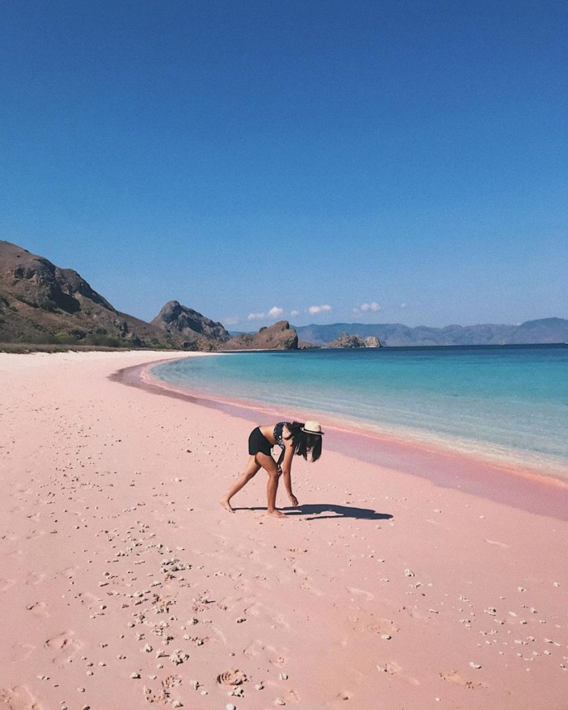 Komodo Cruise Highlights: The Pink Beach
