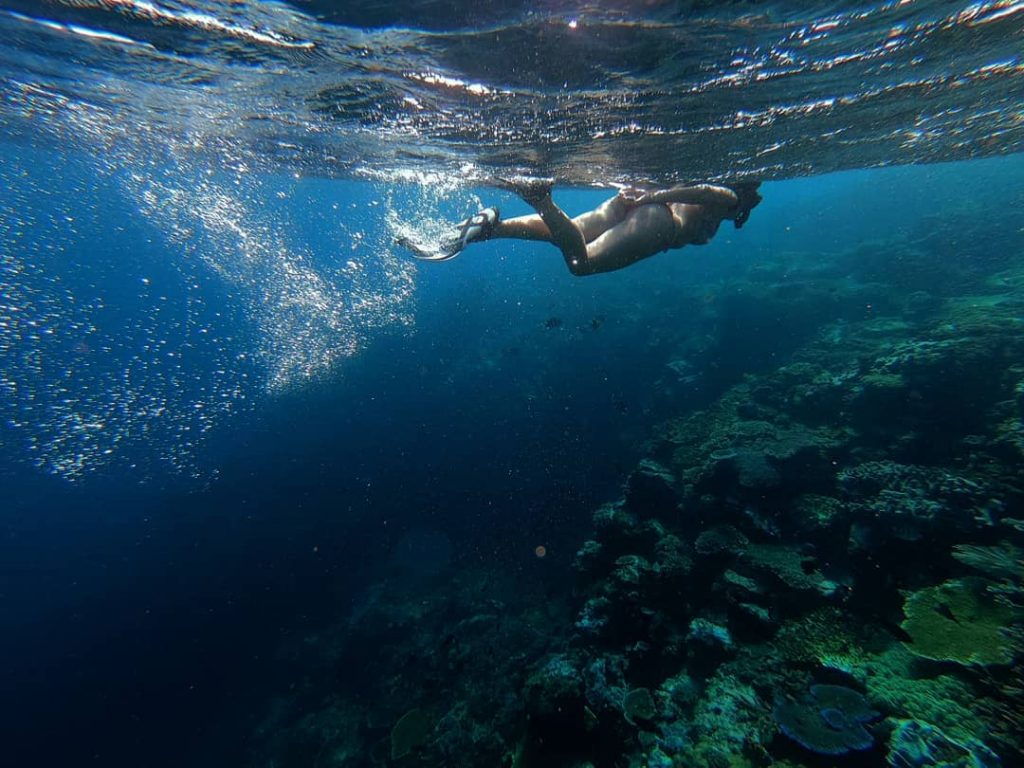 The Dos and Don'ts of Snorkeling in Komodo