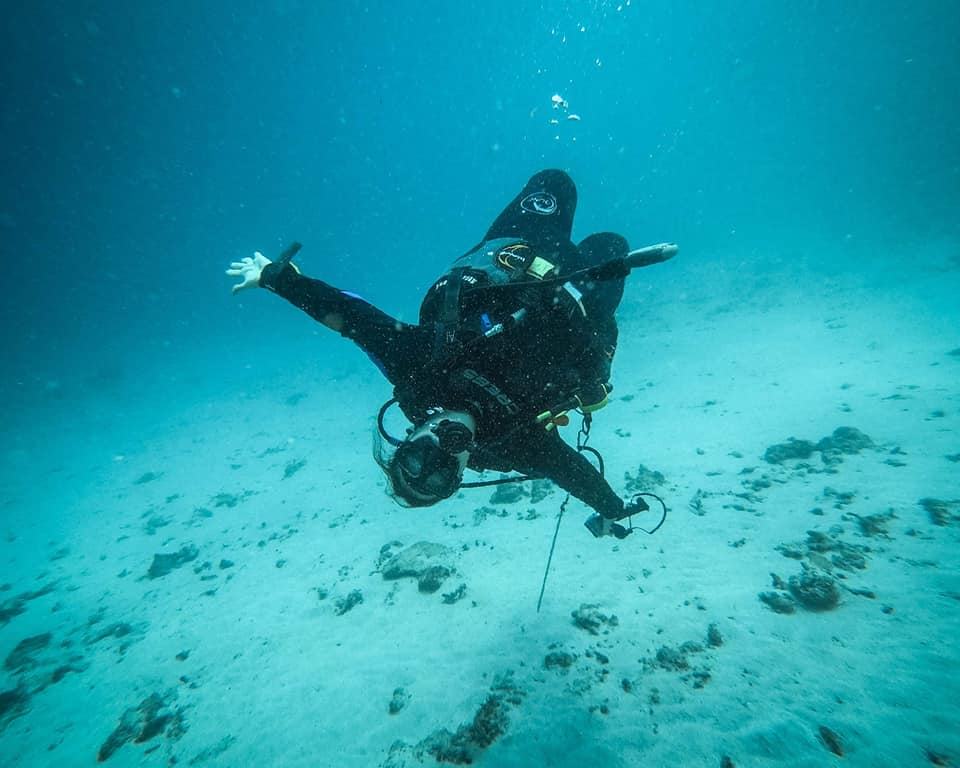 You Can Only Dive in Tropical Water diving for beginners
